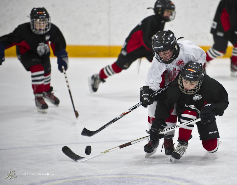 Image result for novice hockey